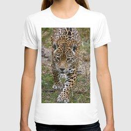 Prowling Jaguar T-shirt