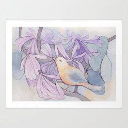 Affable Bird Art Print