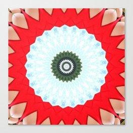 Some Other Mandala 255 Canvas Print
