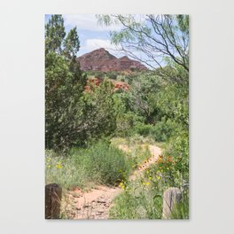 Texas Canyon 4 Canvas Print