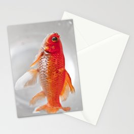 Swiming dead Stationery Cards
