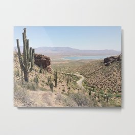 Road to Roosevelt Metal Print