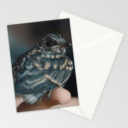 Gimbal The Pipit 01 Stationery Cards