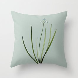 Vintage Spring Squill Botanical Illustration on Mint Green Throw Pillow