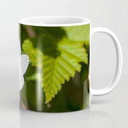 White Moth Photography Print Coffee Mug
