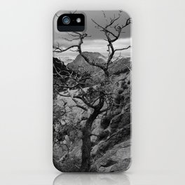 Withered Tree on top of Mountain Range, Big Bend - Landscape Photography iPhone Case