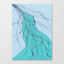 Fine lines Canvas Print