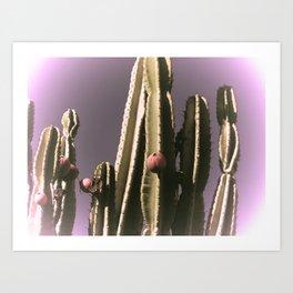 Prickly Skies Art Print