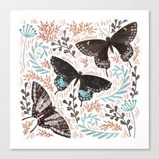 Swallowtail Butterflies Canvas Print