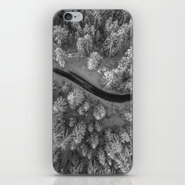 Snow pine forest iPhone Skin