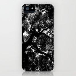 Camphor Canopy iPhone Case