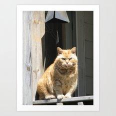 Cat Boy Art Print
