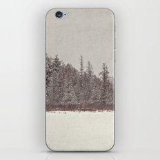 winter landscape iPhone & iPod Skin