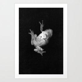 Falling Frog Art Print