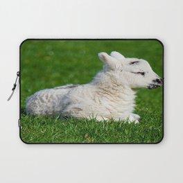 A Sleepy Newborn Lamb In A Field Laptop Sleeve