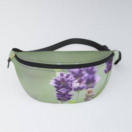 Lavender Fanny Pack