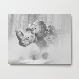 Rhino Photography | Animal |  Landscape | Abstract | Niagara Falls | Nature | Black and White Metal Print
