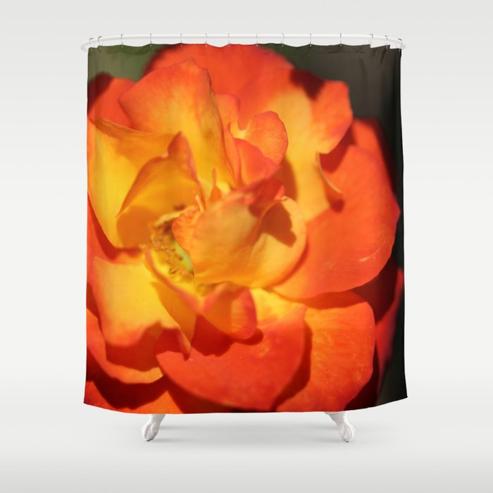 Orange Flower Shower Curtain By Laurapendleton