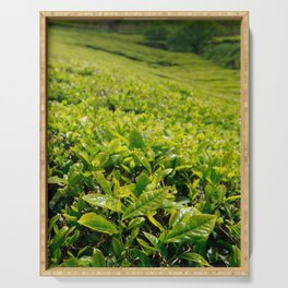 Gorreana tea gardens Serving Tray