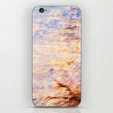 Indian Summer 6 iPhone & iPod Skin
