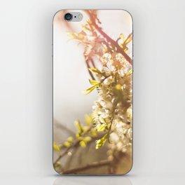 Sunny Blossom iPhone Skin