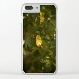 A yellow leaf in the green tree Clear iPhone Case