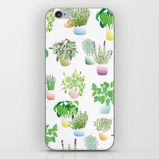 Herb Garden iPhone & iPod Skin