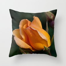 perfectly peach rose Throw Pillow