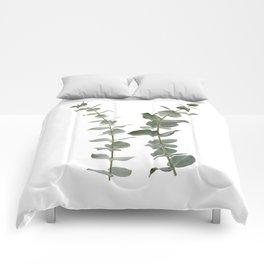 Eucalyptus Branches I Comforters