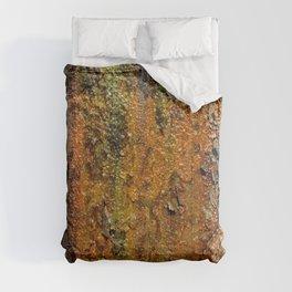 Texture 929 Comforters