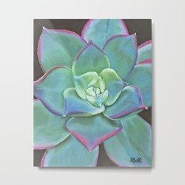 Vibrant Aqua Succulent Plant Metal Print