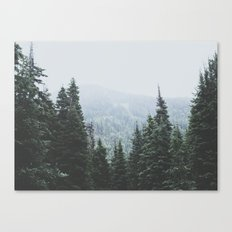 Forest Window Canvas Print