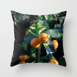 Thai Lemons- botanical photography '18 Throw Pillow