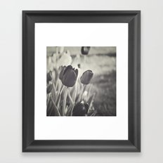 When Spring Was Here B/W Framed Art Print