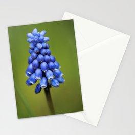 Blauwe Druifjes Stationery Cards