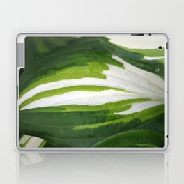 Shades of Green and White  Laptop & iPad Skin
