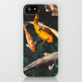Chinese fish swim in the water iPhone Case