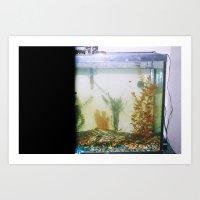 A gross fish tank Art Print