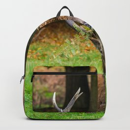 Majestic. Backpack