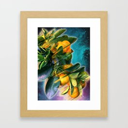 Small fruit tree in outer space Framed Art Print