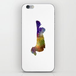 Dachshund Long Haired in watercolor iPhone Skin