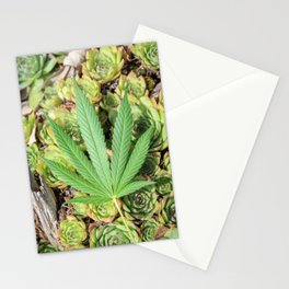 Sativa & Succulents Stationery Cards
