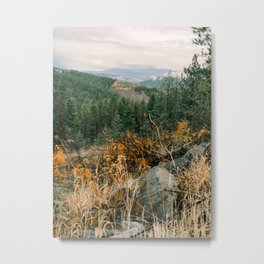 Autumn in a Northwest Forest and Mountains Metal Print