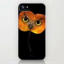 Autumn Owl-2 iPhone Case