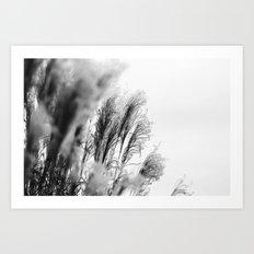 Tall Grass Art Print