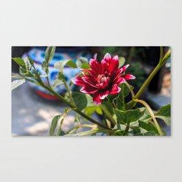 Floral Brooklyn Canvas Print