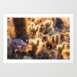 Cacti Medley Art Print