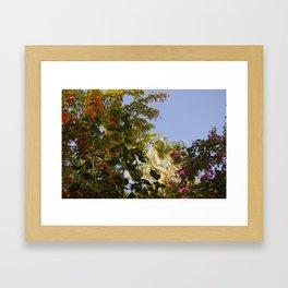 Sky 4 Framed Art Print