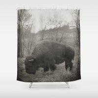 buffalo Shower Curtains featuring Buffalo  by Kaelyn Ryan Photography
