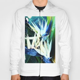 Exotic Bird of Paradise Flowers in Tropical Jungle Hoody